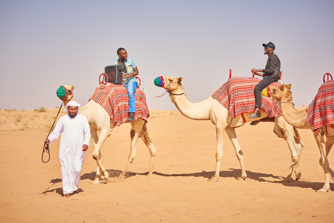 CAMEL SAFARI 1 - Best Tip For Enjoying The Desert Safari Tour