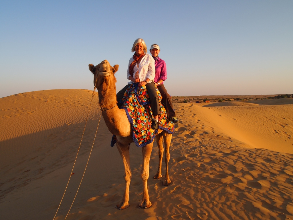 CAMEL SAFARI - Best Tip For Enjoying The Desert Safari Tour