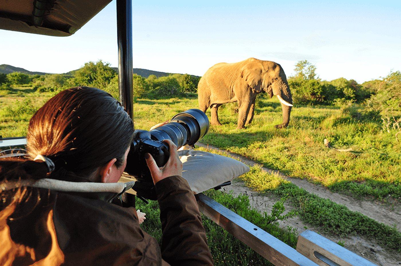 photographysafari 2 - Tips to Take Awesome Photos During a Safari