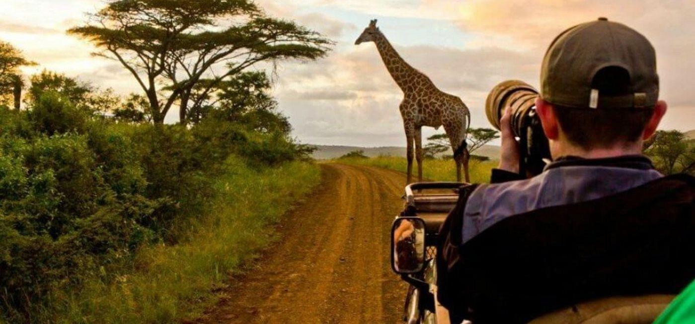 photographysafari 3 - Tips to Take Awesome Photos During a Safari