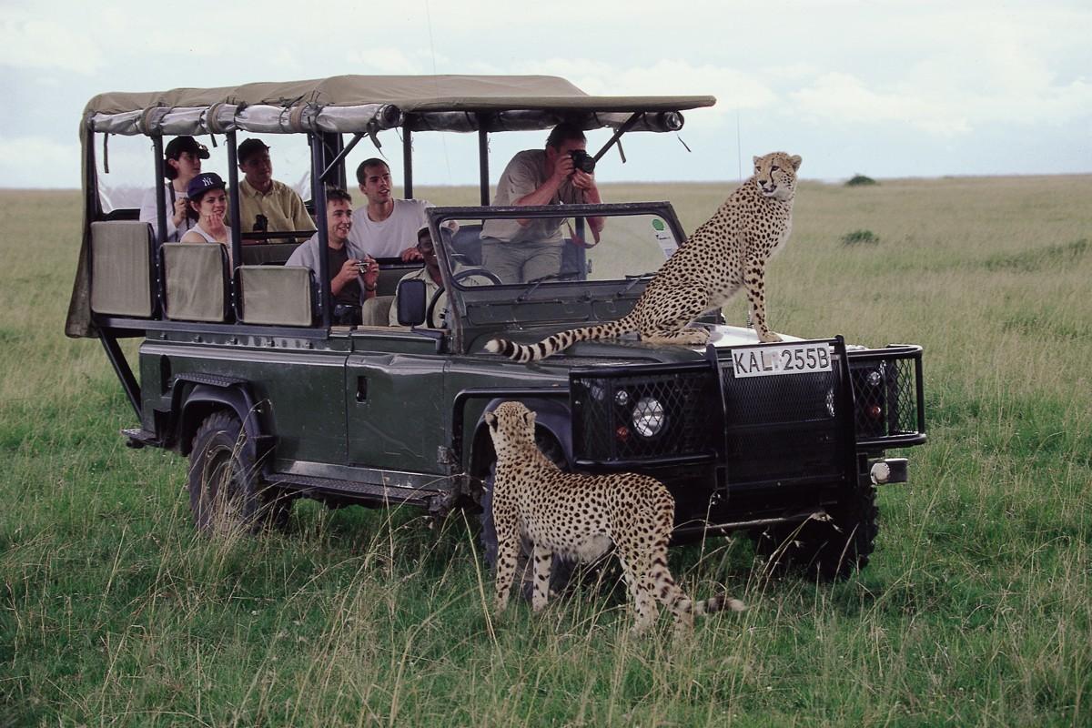 Sampling Kenya-A Dream Holiday Destination – Silverbird ...