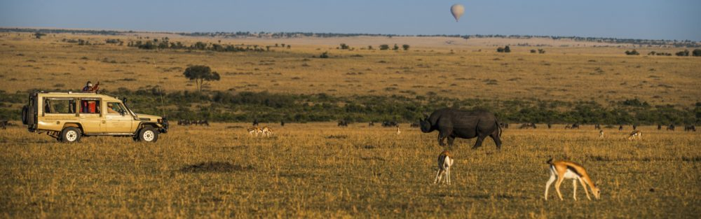 IMG 001 1000x313 - 5 Awesome Facts About Safaris In Kenya That You Didn't Know About