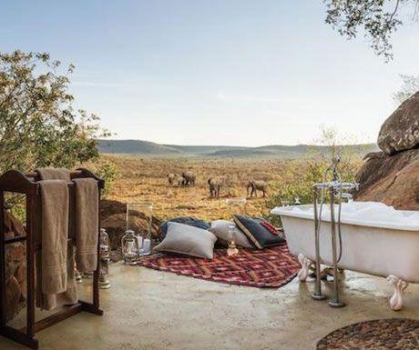 Madikwe Hills elephants.jpg.optimal - Top 10 safari camps for elephant viewing
