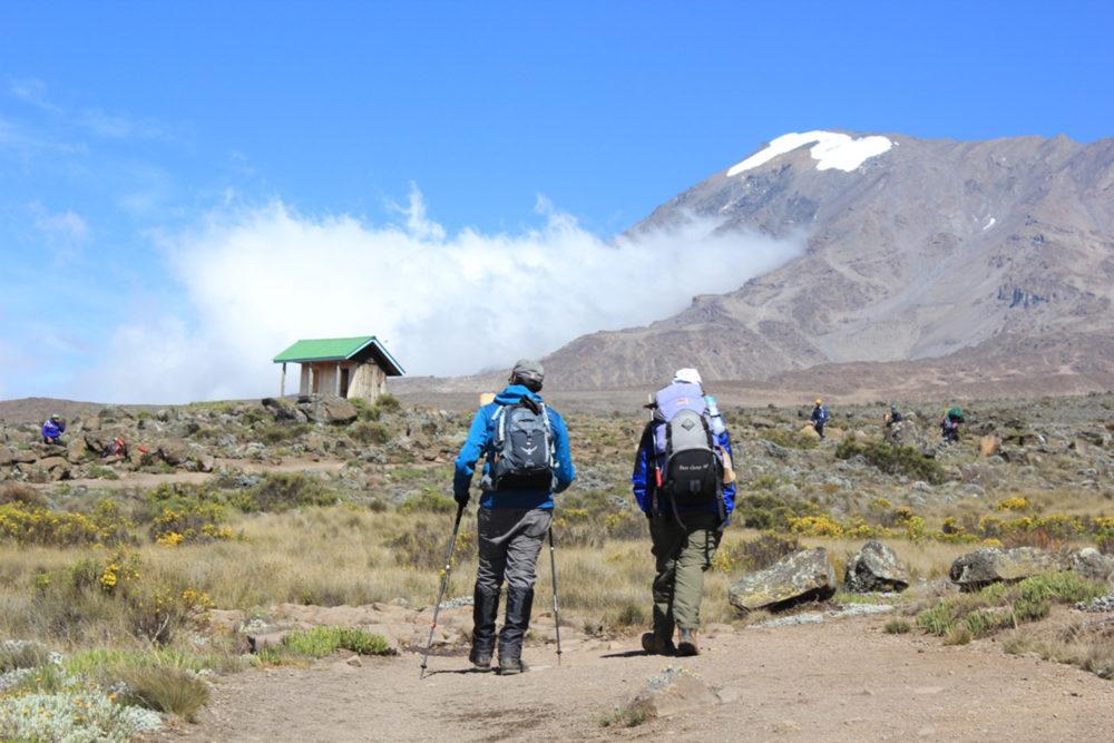 climbing2 1000x667 - Climbing Mount Kilimanjaro